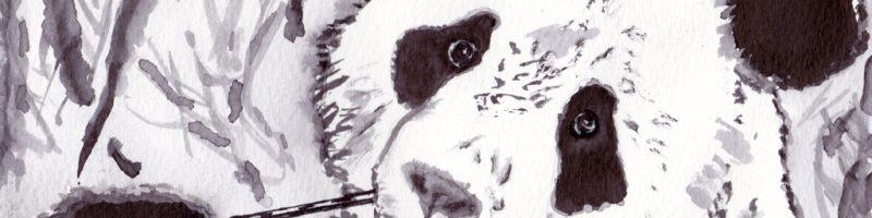 Panda Ink Wash